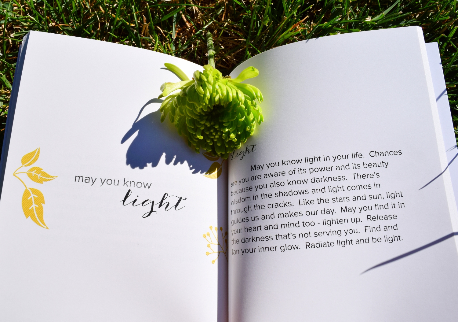 book-of-meditations-may-you-know-joy