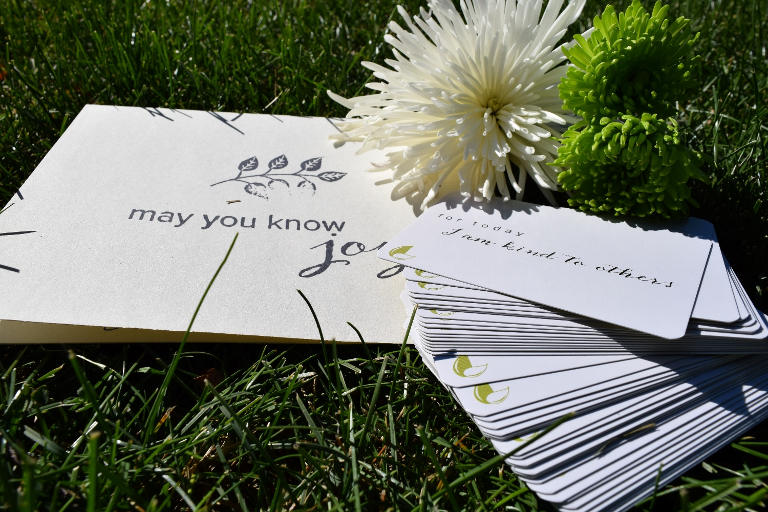 May You Know Joy Intention Cards. I am kind to others