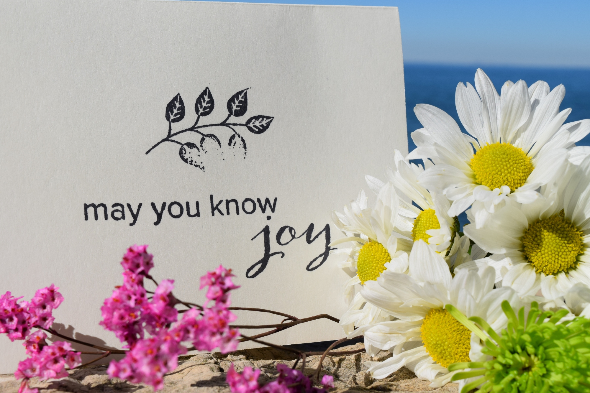 May You Know Joy meditation and intention cards